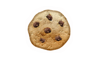 Webbjobb.io cookie