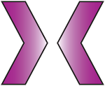 BiDirection logotyp