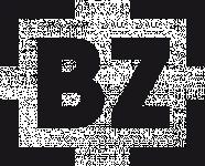 Brave Zone logotyp