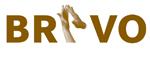 Bravo production & solution pool ab logotyp