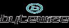 Bytewize AB logotyp