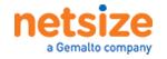 Netsize IPX logotyp